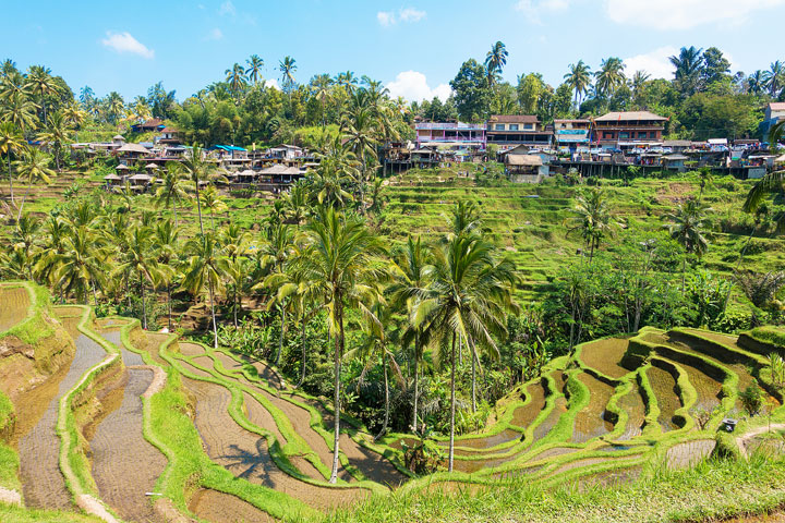 tegallalang-rice-terraces-bali-indonesia-01